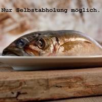 Barfgold ganze Makrelen (am Stück)