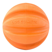 Dog Comets Swift-Tuttle Orange