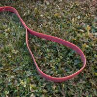 Gummierte Nylonleine 5m mit Handschlaufe